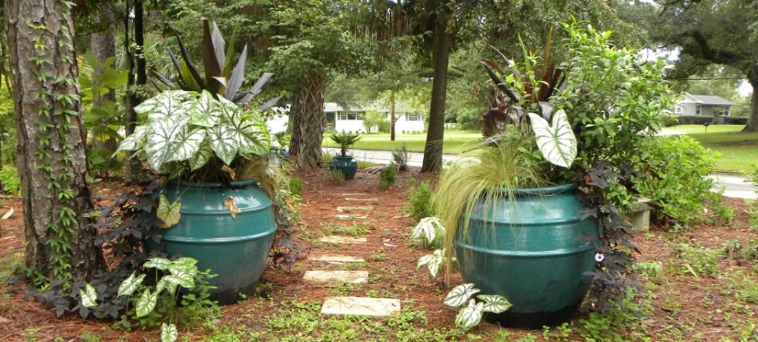 History Pensacola Federation Of Garden Clubs