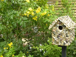 Sassafras Garden Club Pensacola Federation Of Garden Clubs