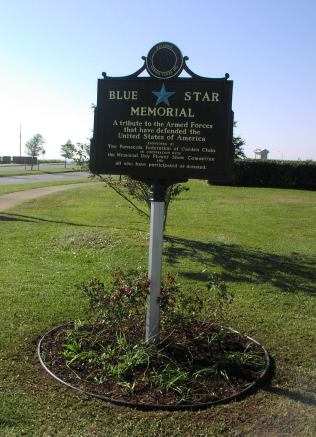 Blue Star Marker